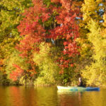 woman in canoe with foliage backdrop