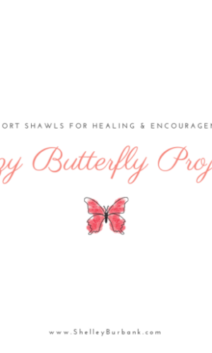 Cozy Butterfly Project